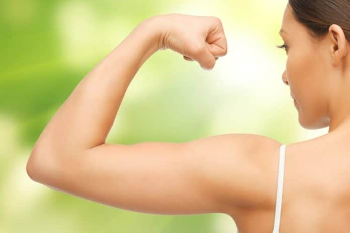 exercices pour se muscler les bras