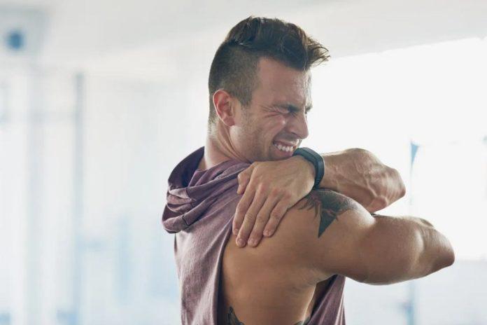 courbatures de musculation