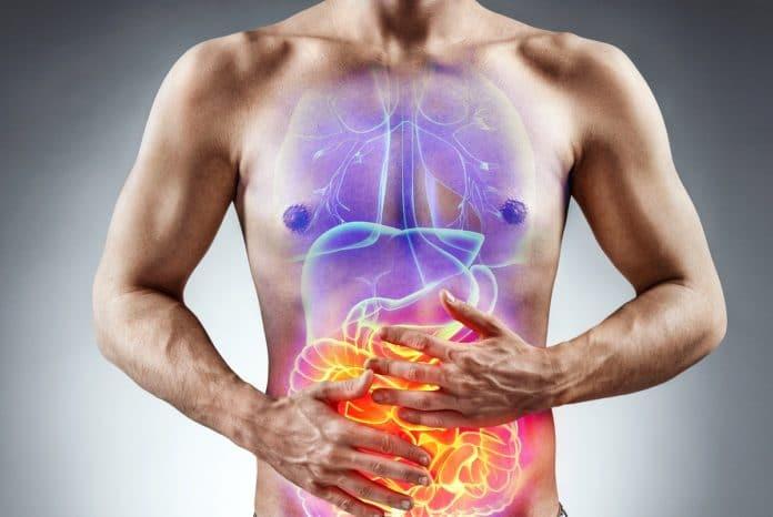 fonctionnement des bruleurs de graisse