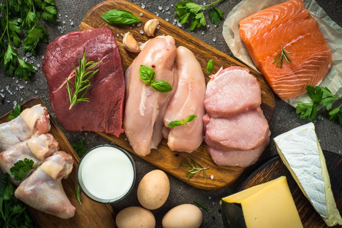 protéines animales le mailleurs aliment coupe faim