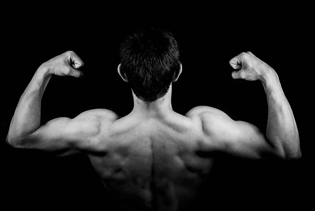 L'arginine : quels bienfaits pour pratiquer la musculation ?