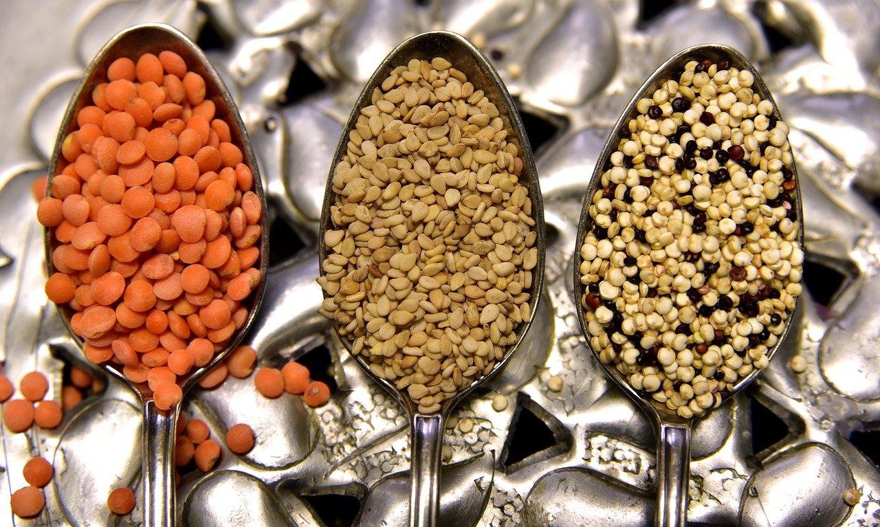 aliments coupe faim pauvres en graisses et lipides