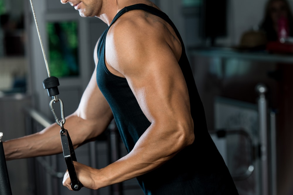 muscler triceps